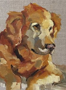 "Daily Paintworks - ""Harvey"" - Original Fine Art for Sale - © Marcia Hodges Animal Paintings, Animal Drawings, Golden Retriever Art, Dog Portraits, Dog Art, Cartoon Art, Painting Inspiration, Painting & Drawing, Art Projects"