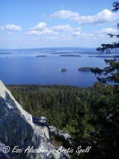 Ukko-Koli, loistava kohde lasten kanssa Suomen kansallismaisemassa.
