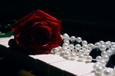 Rose Piano Wallpaper Photos 43832 HD Pictures | Top Background Free