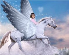 The girl and her pegasus by pootoo