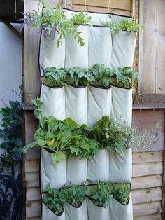 El huerto urbano está de moda. ¡Te ayudamos a conseguirlo!   Decorar tu casa es facilisimo.com