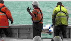 SLR Consulting Australia do some cool stuff in the field of Underwater Acoustics