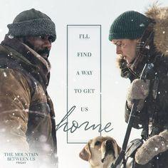 Con una pareja de protagonistas de primer nivel, Idris Elba y Kate Winslet, el director palestino Hany Abu-Assad nos presenta su última película, La montaña entre nosotros.