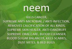 Antiseptic Neem