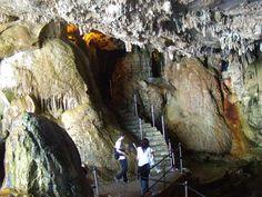 La cueva toma su nombre del dios romano del mar, Neptuno y está gestionada por el Patronato Autónomo de Turismo de Alghero.