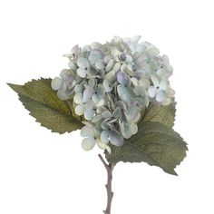 Amazing Plastic flowers and plants. Browse our extensive collection and choose your plastic flower or plant. Plastic Flowers, Shabby Chic Style, Plant Decor, Flower Decorations, Hydrangea, Blue Green, Pretty, Plants, Brunch