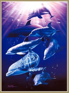 Seascapes from Hawaii Christian Ries Lassen (Christian Riese Lassen) works) Dolphin Images, Dolphin Art, Underwater Animals, Underwater Art, Orcas, Animals And Pets, Cute Animals, Sea Art, Marine Life