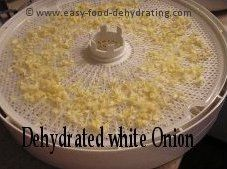 Dehydrated white onion on Nesco Dehydrator tray. More info. at http://www.easy-food-dehydrating.com/dehydrating-onions.html