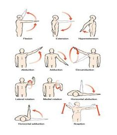 exercise for shoulder strengthning  ottherapeutic