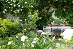 Ein Stadtgarten wie in Südfrankreich