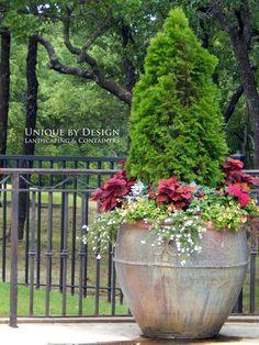 Unique by Design l Helen Weis : Container Gardening Flower Planters, Garden Planters, Flower Pots, Container Plants, Container Gardening, Flower Containers, Large Containers, Garden Basket, Garden Windows