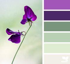 { color flora } image via: @cloverhome.nl #palette #pallet #colour #colourpalette #design #seeds #designseeds