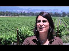 Gloria Ferrer Caves & Vineyards 25th Anniversary