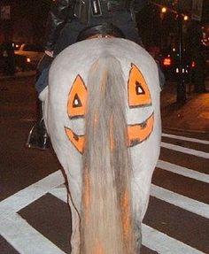 horse halloween costumes - Google Search