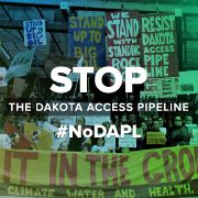 "Tell President Obama: Stop the Dakota Access oil pipeline. #NoDAPL  The petition to President Obama reads: ""The Dakota Access pipeline would fuel climate change, cause untold damage to the environment, and significantly disturb sacred lands and the way of life for Native Americans in the upper Midwest. Direct the U.S. Army Corps of Engineers to revoke the permits under 'Nationwide Permit 12' and stop the Dakota Access pipeline once and for all."""