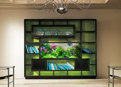 Captivating Fish Tank Room Divider For Contemporary Home Ideas: Astonishing Fish Tank Room Divider With Floral Aquarium And Various Fish Also Beige Paint Walls For Modern Home Design Ideas