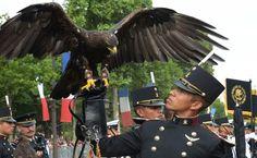 Resultado de imagen para arte militar mexicano