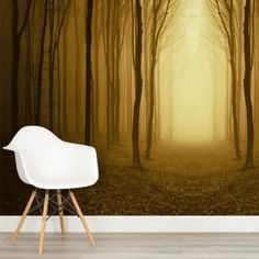 golden-forest-pathway-forest-square-wall-murals