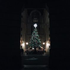Christmas tree at Philadelphia's City Hall (Photo by C. Benner for Visit Philadelphia)