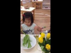 Montessori Practical Life - Flower Arranging