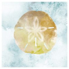 Canvas sand dollar print with watercolor inspiration.   Product: PrintConstruction Material: Canvas and MDF...