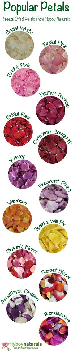 A few of our favorites rose petals for weddings & special events. Over 100 colors of petals to choose from at Flyboy Naturals.  Take a peek at all the options click this link: http://flyboynaturals.com/our-products/ or visit www.flyboynaturals.com for ideas & how you can incorporate petals into your event...include petals in your invitations. Decorate your aisle & tables. Flower girl and guest toss rose petals over you?  Proposal Petals are so romantic...which color rose petal would you…