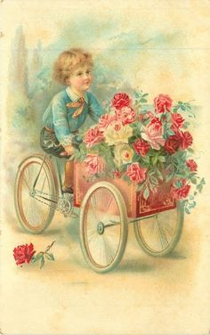 The rose carrier