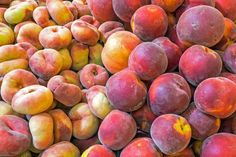 Wholesale Peaches Generally all the properties of different cultivars are the same, most important distinguisher is the fuzziness and plumpness. These are the most produced cultivars of wholesale peaches; Vista Rich, Rich Lady, Venus, Sweet Lady, Silver King, Super Red, Adriana, Big Top, Sun Gold, Caldesi 85, Tastired, Francoise, Spring Lady, Spring Bella, Elegant Lady, CUPIT FOOD Rich Rich, Elegant Lady, Sweet Lady, Big Top, Fruits And Vegetables, Peaches, Venus, King, Silver