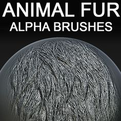 Right now you can get this Alphas via Gumroad. 30% discount + bonus - https://gumroad.com/l/animal-fur-alpha Or Buy animal fur alpha brushes for 3d sculpting in zbrush, mudbox, 3dcoat http://www.turbosquid.com/FullPreview/Index.cfm/ID/747599?referral=voronart