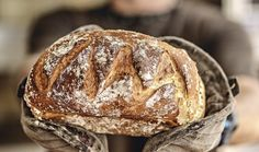 Pečivo z pravého kvasu je chutnější, lépe stravitelné a vydrží mnohem déle čerstvé. Jak tedy založit chlebový kvas v pohodlí domova a nemuset ho složitě shánět? Food And Drink, Bread, Baking, Bakken, Backen, Bakeries, Breads, Reposteria