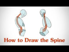 How to Draw the Spine  by Stan Prokopenko*  • Blog/Website | (http://www.proko.com) • Online Store | (http://www.proko.com/store-drawing-and-painting-resources)  ★ || CHARACTER DESIGN REFERENCES (https://www.facebook.com/CharacterDesignReferences & https://www.pinterest.com/characterdesigh) • Love Character Design? Join the #CDChallenge (link→ https://www.facebook.com/groups/CharacterDesignChallenge) Promote your art in a community of over 30.000 artists! || ★