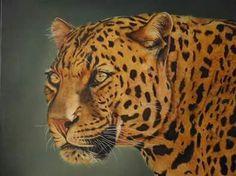 jaguar (oleo sobre tela)