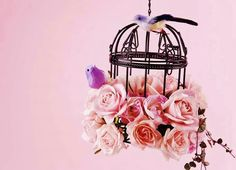 Comments on Bird Cage of Pastel Roses - Flowers Wallpaper ID 456217 Foto Still, Pastel Roses, Bouquet, Flower Bird, Bird Cages, Vintage Shabby Chic, Vintage Birdcage, Vintage Roses, Feelings