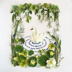 Pond from Flora Forager Deco Floral, Arte Floral, Framed Leaves, Nature Collage, Flower Rangoli, Pressed Flower Art, Nature Crafts, Flower Frame, Botanical Art