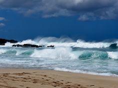 The Seven Mile Miracle, el paraíso del surf. #thesevenmilemiracle #sevenmilemiracle #sevenmilebeach #surf #surflovers #surfparadise #oahu #oahuhawaii #hawaii #hi #doyoutravel #travelgram #travellover #travelblogger #worldtravel #adventurecrew #beautifuldestinations #gohawaii #visitoahu #visithawaii #exploreoahu #explorehawaii #igtravel #igershawaii #igersoahu #igersusa #animate