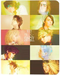 Super Junior 6th album