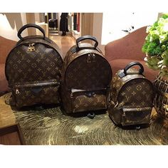 Louis Vuitton Palm Spring Backpacks size comparisons MM $1900 / PM $1650 / MINI $1590