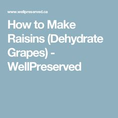 How to Make Raisins (Dehydrate Grapes) - WellPreserved