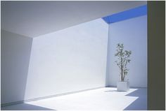 Takuro Yamamoto Architects - white cave house courtyard