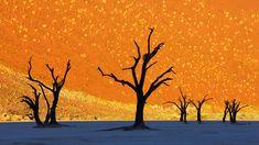 Photo of Namib-Naukluft National Park in Namibia Looks Like a Painting - BOOOOOOOM! - CREATE * INSPIRE * COMMUNITY * ART * DESIGN * MUSIC * FILM * PHOTO * PROJECTS