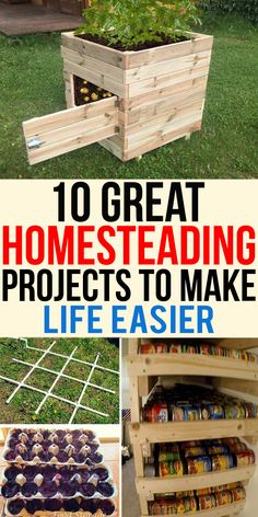 Are you looking for interesting projects? We have a long list of some homesteading projects that you can do at home. We have all types of budget homesteading project that you can choose according to your budget. Homestead Farm, Homestead Gardens, Homestead Survival, Farm Gardens, Survival Tips, Homestead Layout, Survival Skills, Homestead Homes, Off Grid Homestead