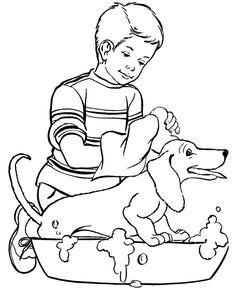 Dachshund getting a bath.