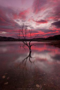 Alone / Sólo: Photo by Photographer Camilo Margelí