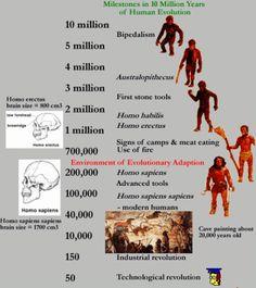 Milestones in 10 Million Years of Human Evolution