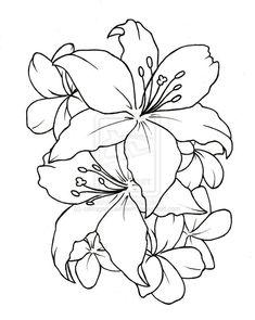 Galería De Fotos E Imágenes Dibujos Enredaderas Para Tatuar