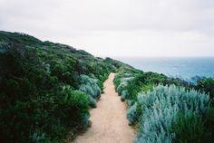 Nature + Landscape Photography Inspiration · Beautiful Moody Nature · Sandy Path