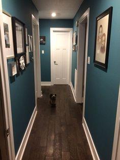 Teal hallway paint, white trim, picture collage, matter frames Teal Hallway Paint, Hallway Colours, Striped Hallway, Black Hallway, Modern Hallway, Narrow Hallway Decorating, Hallway Ideas Entrance Narrow, White Trim, Dark Blue Feature Wall