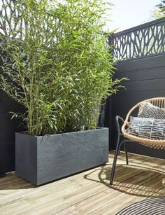 Decorate your outdoor or indoor wall with the plastic Millenium colors anthracite. This wall of Deroma brand displays a 79 cm length to a depth of cm and a height of 39 cm. Rooftop Garden, Balcony Garden, Balcony Design, Garden Design, Back Gardens, Outdoor Gardens, Small Patio Ideas On A Budget, Hydrangea Care, Patio Plants