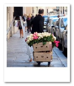 Paris - Vicki Archer, of French Essence.  Perfection on the streets.  Pinned by www.mygrowingtraditions.com