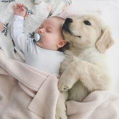babies and puppies - puppies with babies . puppies with babies video . puppies with babies kids . puppies with babies so cute . babies and puppies . puppies and babies videos . babies and puppies video . puppies and babies together So Cute Baby, Cute Kids, Pretty Kids, Little Babies, Fur Babies, Babies Clothes, Cute Puppies, Dogs And Puppies, Doggies